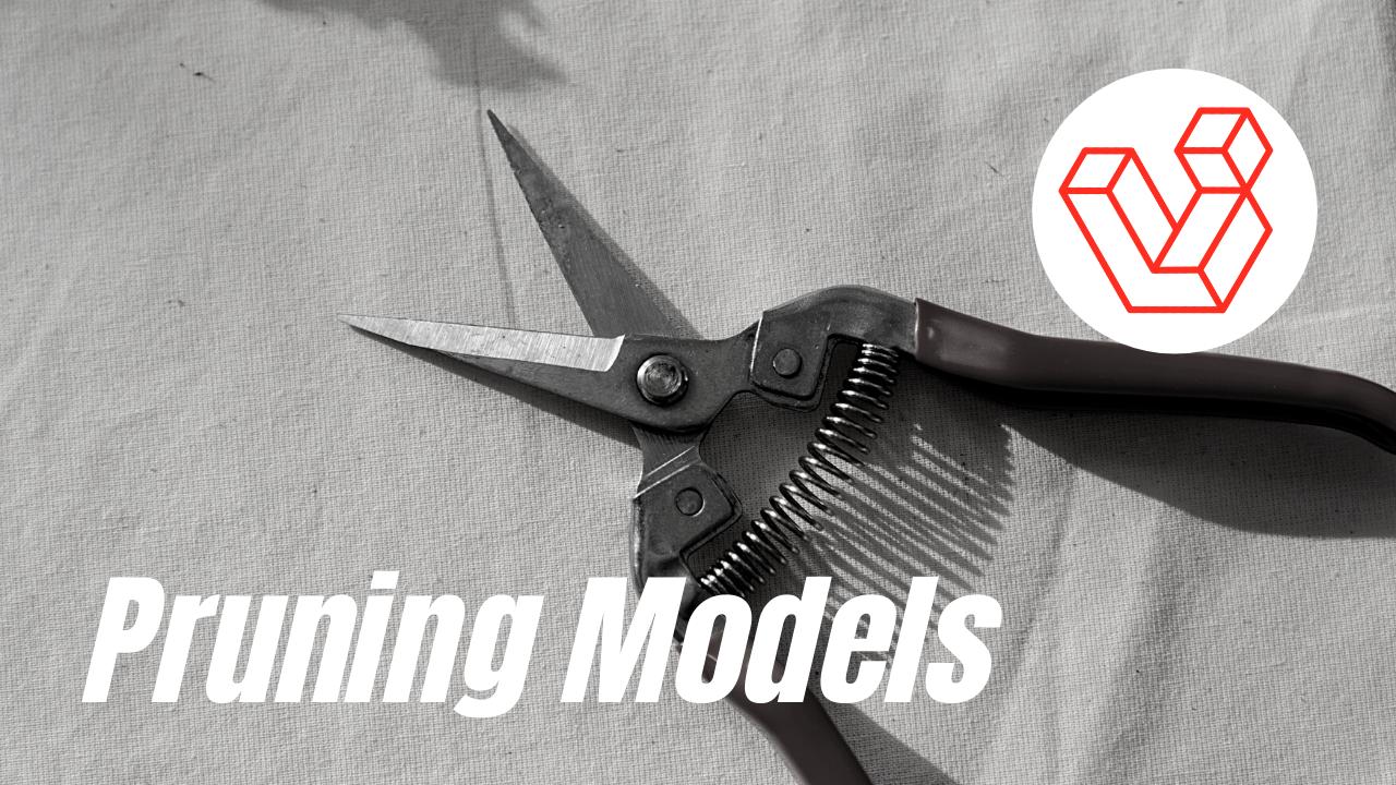 borrado programable de modelos